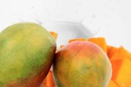 Happy Liquid Mango-Joghurt